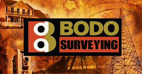 Bodo Surveying Website
